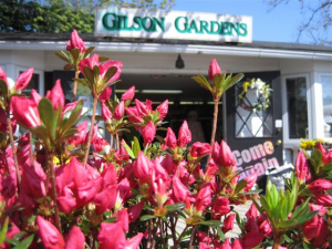 Garden Center And Former Florist For